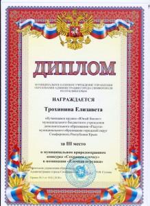 Трохинина_ёлочка