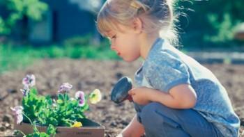 Ссылка на: Муниципальный экологический конкурс проектов «Юный агроном» с 05.07.2021 по 18.08.2021г.